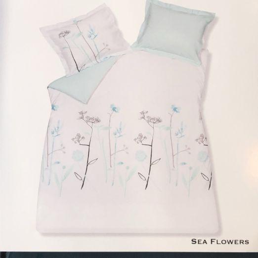 vandyck-sea-flowers-pastel-turquoise